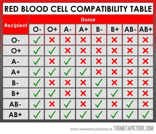 Blood Type Chart: Facts and Information on Blood Group Types ...