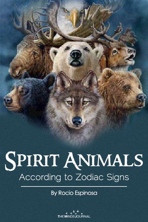Infographic What Is Your Spirit Animal According To Your