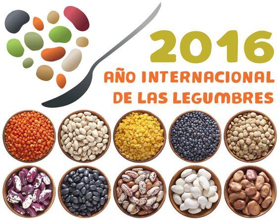 Con motivo de la celebración del Año Internacional de las Legumbres, la FAO…