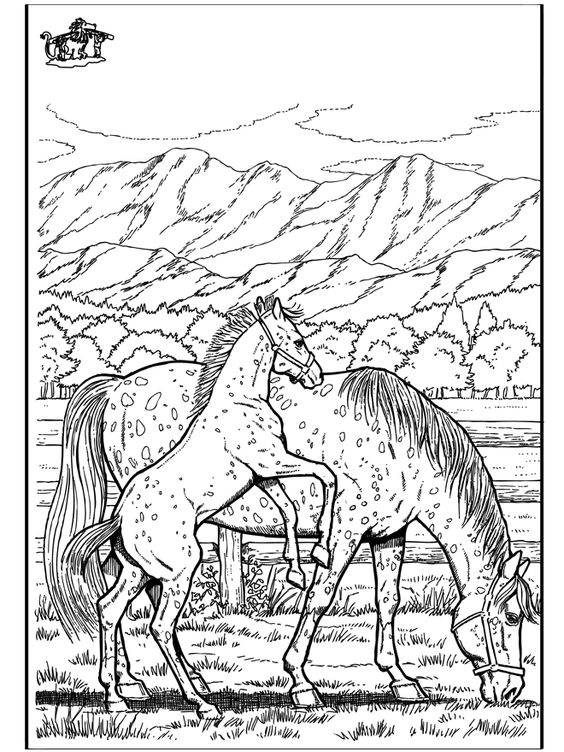 coloring pages wild horses - photo#23
