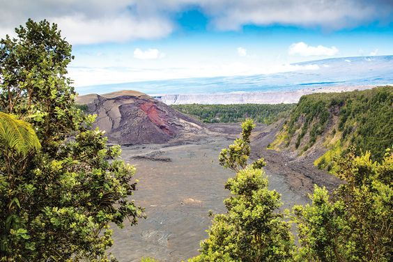 Explore a Hawaiian Forest and Volcanic Caldera on the Kilauea Iki Trail   Hawaii Magazine