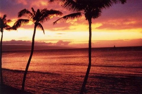 Papakea Resort Vacation Rental - F309 - Sleeps 4 Kaanapali Condo in Maui, HI, Oceanfront with Gorgeous 3rd Floor View!