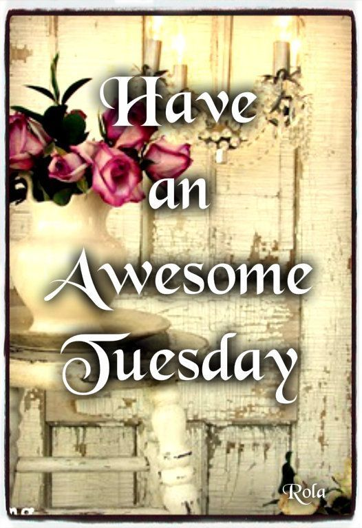 Have an awesome Tuesday quotes quote days of the week good morning tuesday tuesday quotes happy tuesday: