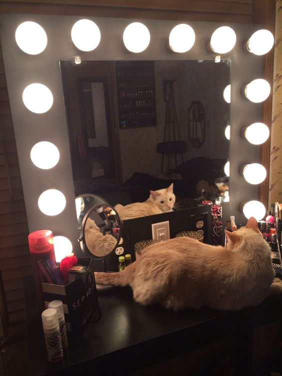 DIY Lighted makeup mirror