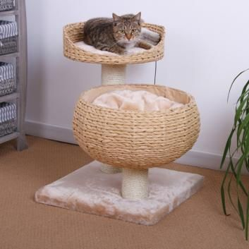 Pet Smart Pet Pals Eco Friendly Double Nesting Cat Condo- want this, or maybe I can make one (right...)