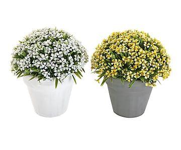 Set de 2 plantas artificiales con maceta de cerámica Garden