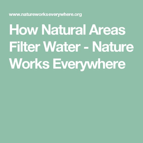 How Natural Areas Filter Water - Nature Works Everywhere