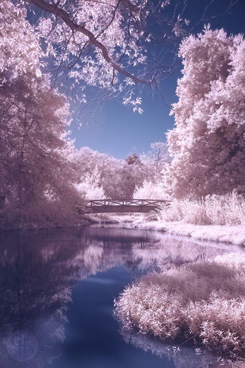 Www Etsy Com Shop Revlstudio Beautiful Nature Beautiful Landscapes Nature Photography