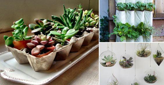 Cómo cultivar un jardín en espacios pequeños: 10 ideas para inspirarte