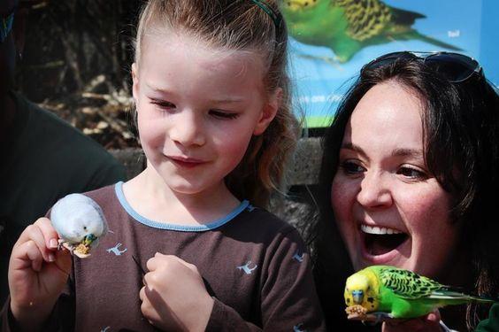 Zoo Crew #Kids #Events