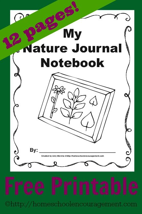 free nature journal printables backyards nature and notebooks. Black Bedroom Furniture Sets. Home Design Ideas