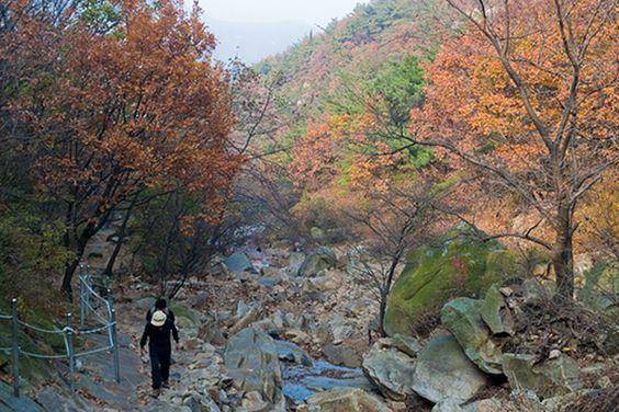 Leo núi, đi dạo trên những con đường núi sẽ là trải nghiệm thú vị