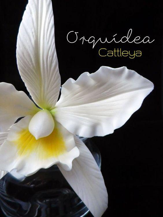 FLORES DE AZÚCAR. ORQUÍDEA CATTLEYA Estas orquídeas pertenecientes al género…