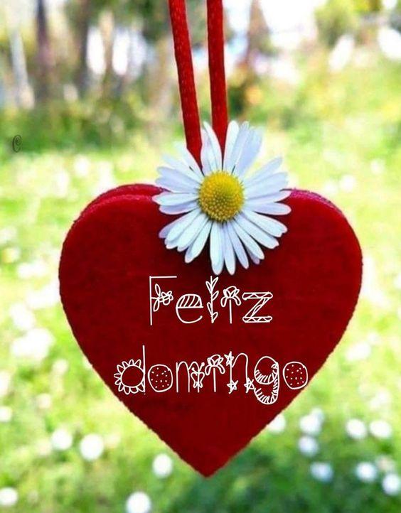 Feliz Domingo bonitas imágenes 238 - BonitasImagenes.net
