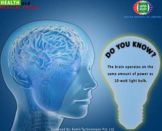 Medical facts, Facts and The brain on Pinterest