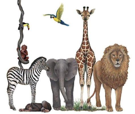 Jungle Wall Decals Nursery Wall Mural Safari Wall Decals