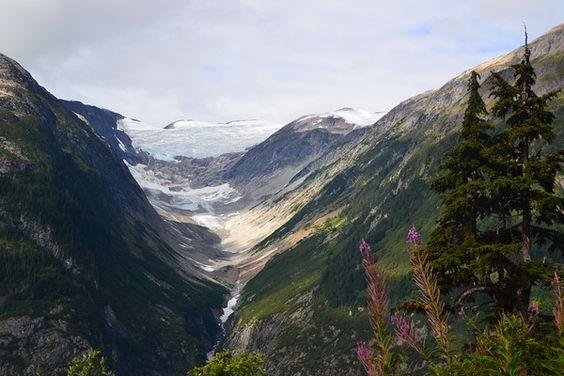 Forgetmenot, Glacier - Hyder, Alaska - Francesc Nolla, Agama Viatges