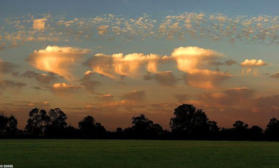 "Altocumulus castelanus clouds are  also known as jellyfish clouds due to their jellyfish-like appearance. These formed around 17,000 ft due to when the rush of moist air comes from the Gulf Stream and gets trapped between layers of dry air. The top of the cloud rises into a jellyfish shape and long tentacles known as ""trailing virga"" form from rain drops that have evaporated."