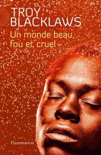 """Troy Blacklaws : A la recherche du rêve perdu de Mandela... Après les remarqués """"Karoo Boy"""" (2006) et """"Oranges Sanguines"""" (2008), Troy Blacklaws publie """"Un monde beau, fou et cruel"""" (Flammarion) dans lequel il dépeint le portrait d'une Afrique du Sud violente mais envoûtante."""