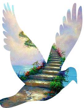 *** La colombe de la Paix ***: