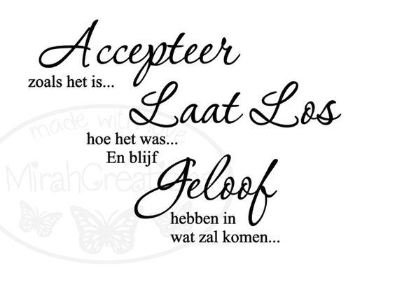 Accepteer zoals het is... Laat los hoe het was... En blijf Geloof hebben in wat zal komen...
