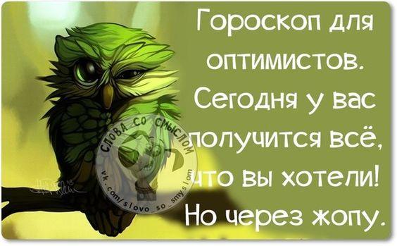 https://i.pinimg.com/564x/f0/c8/8b/f0c88b75e813ce990097fcec9ee7682c.jpg