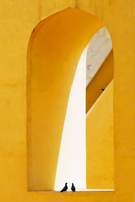 Two Birds Flirting At The Romantic Jantar Mantar Of Jaipur, While A Third One Is Watching From Behind.  Photographer: Sevki C. Duzyol