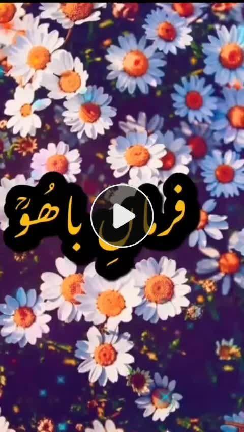 Pin By Khanqah Sarwari Qadri On Tik Tok Videos In 2020 Watch Video Sultan Video
