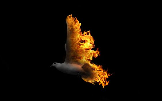 Confirmation Dove Flame