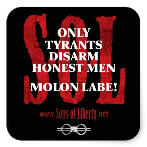 Molon Labe ! - This is the message that every American must internalize. Get legally armed.  Every American should be by definition, a Rifleman. Man and woman-no exceptions.               Sic Semper Tyrannus