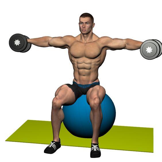 L'écarté aux haltères latérales est un exercice spécifique pour développer la partie latérale du deltoïde. En tant que muscles secondaires, la partie antérieure, celle postérieure du deltoïde et, durant la phase de contraction, le trapèze sont impliqués.
