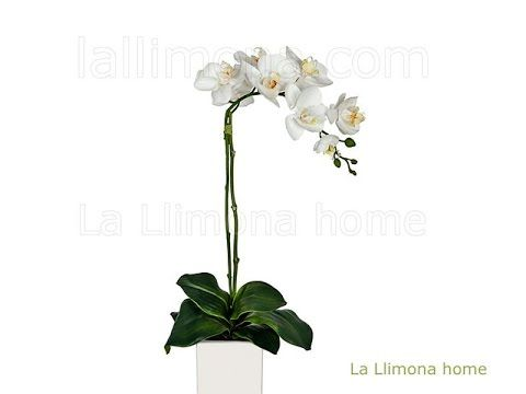 Flores artificiales orquideas artificiales blancas con for Orquideas artificiales