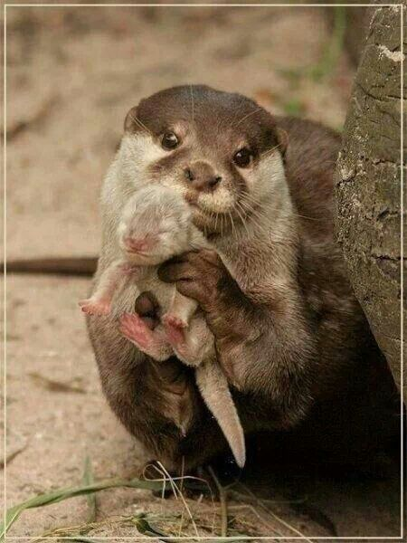 Proud Mommy!!