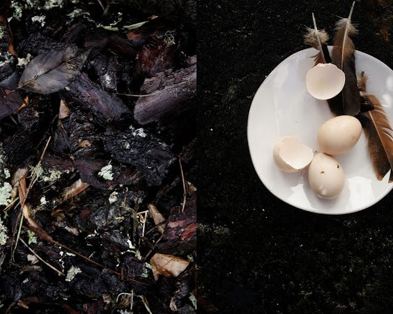 Pratos e Travessas | Recipes, photography and stories