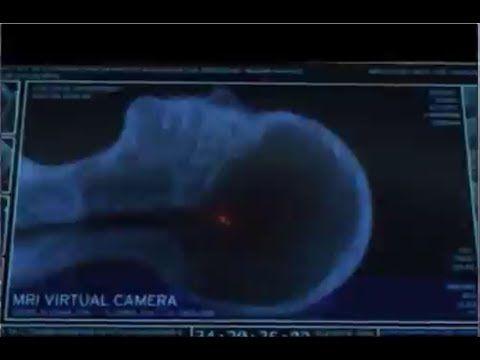 الميت يسمع نبأ وفاته بعد موته Youtube Landmarks Natural Landmarks Northern Lights