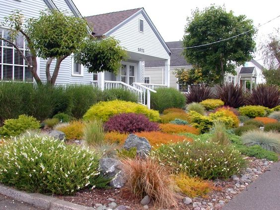 Gardens front yards and pathways on pinterest for No maintenance plants perennials
