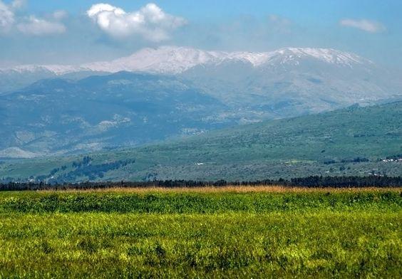 View on Mount Hermon.  Near Tsomet Koah. (Koah Junction, Rte. 90, south of Kiryat Shemonah.