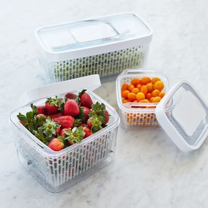 http://www.surlatable.com/product/PRO-1992007/OXO Greensaver Produce Keeper