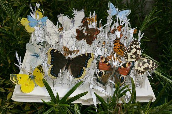 Observers book of Butterflies #artistsbooksculpture #bookart: