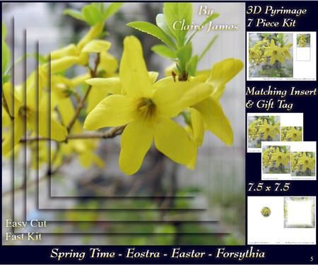 Spring Time Eostra Easter Forsythia Insert Tag on Craftsuprint - Add To Basket!