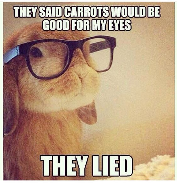I KNOW RIGHT I EAT CARROTS ND I STILL WERE GLASSES. But to be fair bunny you look adorable with those on