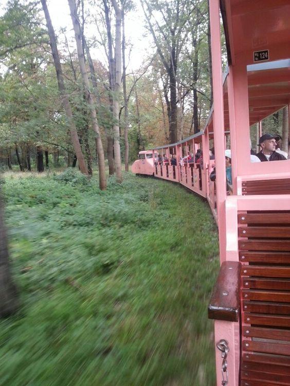 Fahrt mit der Praterbahn