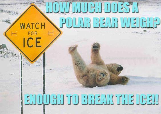 ice breaker jokes - Google Search | awsome | Pinterest ...