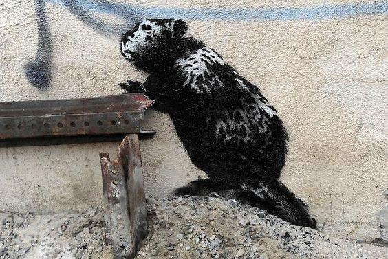 In East New York hinterließ Banksy am 10. Oktober ein imposantes Tier: ...