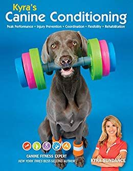 Kyra S Canine Conditioning Games And Exercises For A Healthier