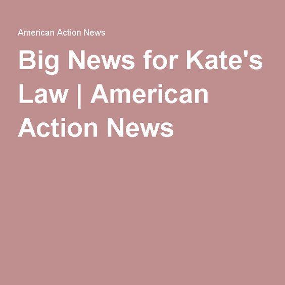 Big News for Kate's Law   American Action News