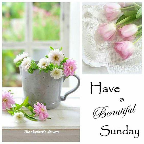 Have a Beautiful Sunday! ღ❁ღƤℓҽąʂҽ Ƒҽҽℓ Ƒɽҽҽ ƬᎧ ƤᎥɳ Ꮗɦą৳ ƴᎧմ ᏝᎥƙҽ! ƝᎧ ƤᎥɳ ᏝᎥɱᎥ৳ʂ! Ʈɧąɳƙ ϒσմ Ƒσŗ ƑσℓℓσωᎥɳɠ ᘻƴ ᙖoąŗɗʂ! ᏋɳᏠᎧƴ , Ꮳσɱҽ ᙖąƈƙ Ꭷƒ৳ҽɳ, ąɳȡ Ӈąƥƥƴ ƤᎥɳɳᎥɳɠ~ ☘☘ Ïŕìŝђ €ƴẻŝ ☘☘ღ❁ღ
