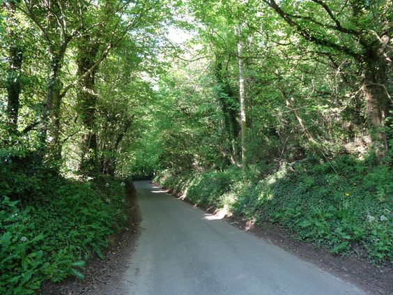 road outside Snowshill village in the Cotswolds