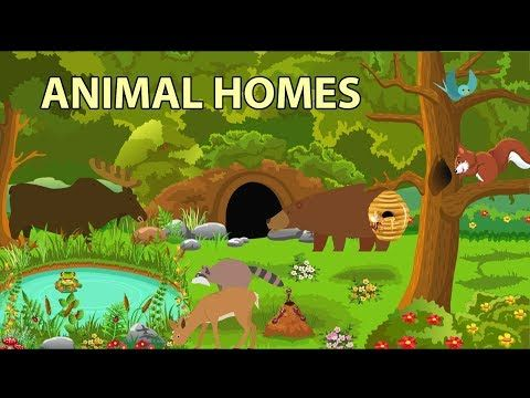 Printable Flash Cards Illustrating Animal Homes Click On The Thumbnails To Get A Larger Printable Version Animals And Their Homes Animal House Animals