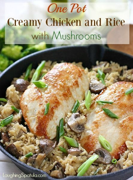 One Pan Delicious Dinner that comes together in about 30 minutes!